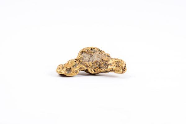 Large California gold and quartz nugget authentic